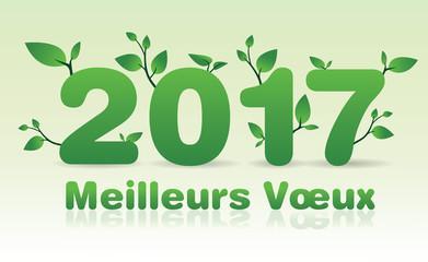 2017 – Happy New Year – Frohes Neues Jahr – Gelukkig Nieuw jaar – Feliz Año – Nuovo Anno Felice – Szczęśliwego Nowego Roku – Bonne Année – 2017